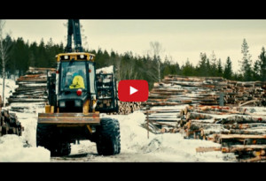 skogsbrukstekniker-film